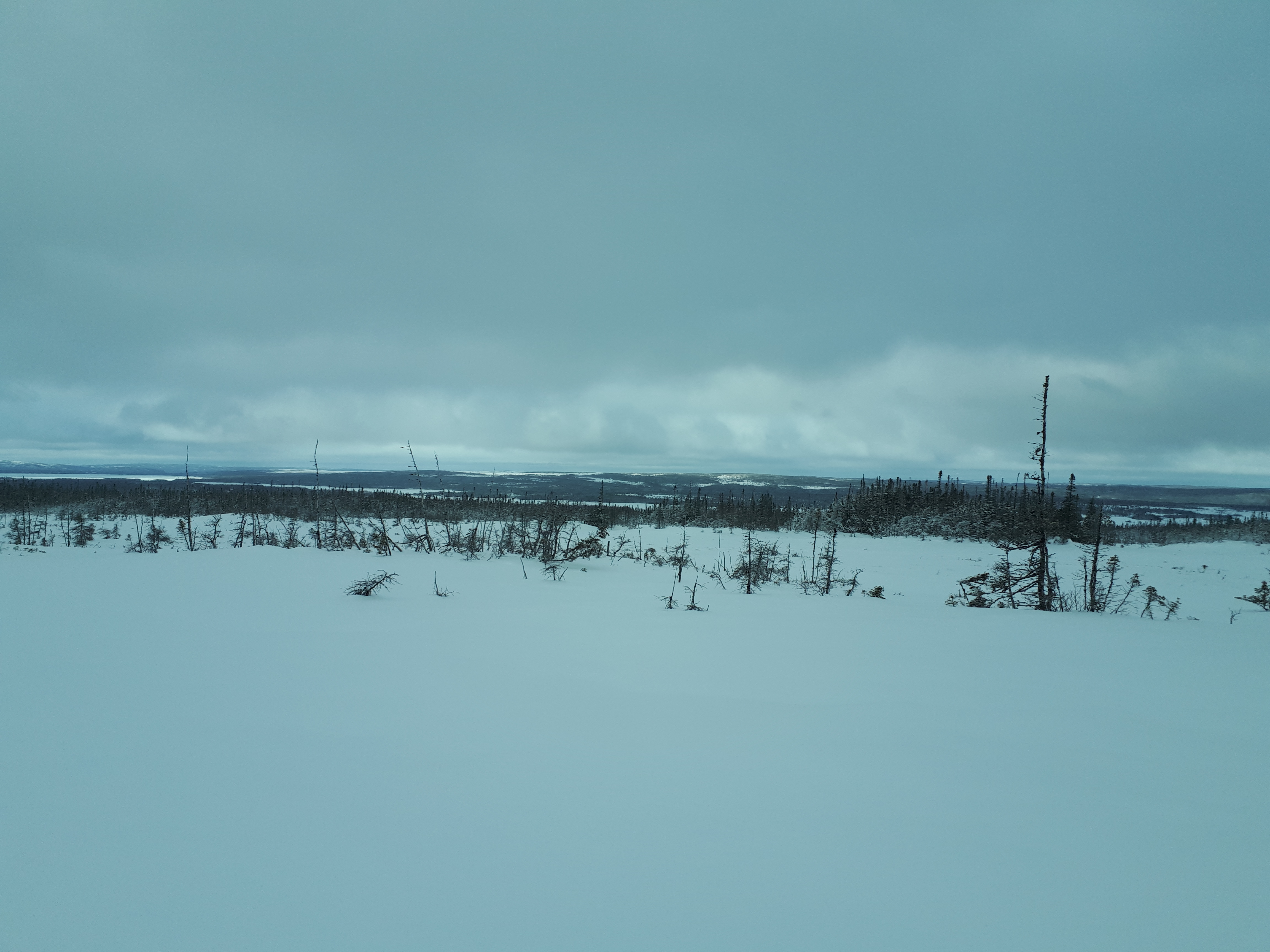 Terra Nova4
